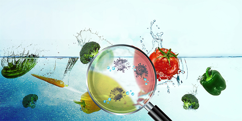 Magnifying Bacteria