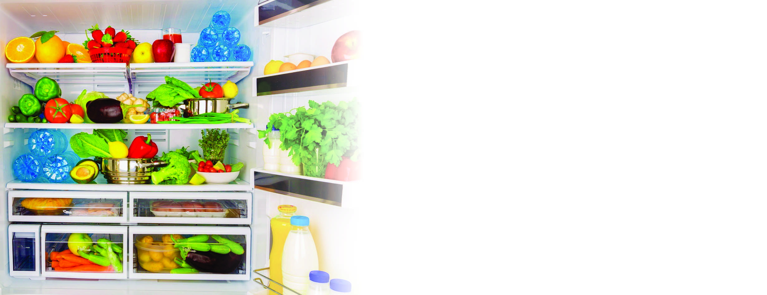 Ozonator in refrigerator